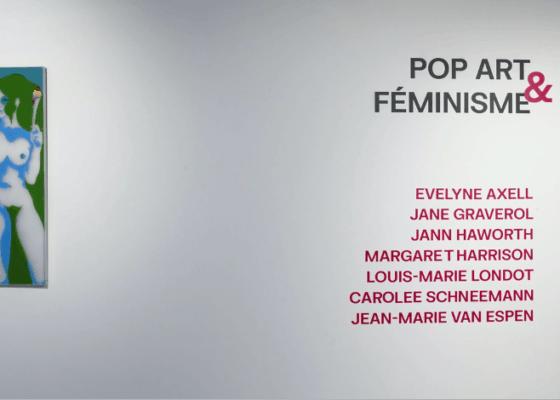 pop art et féminisme au delta namur evelyne axell
